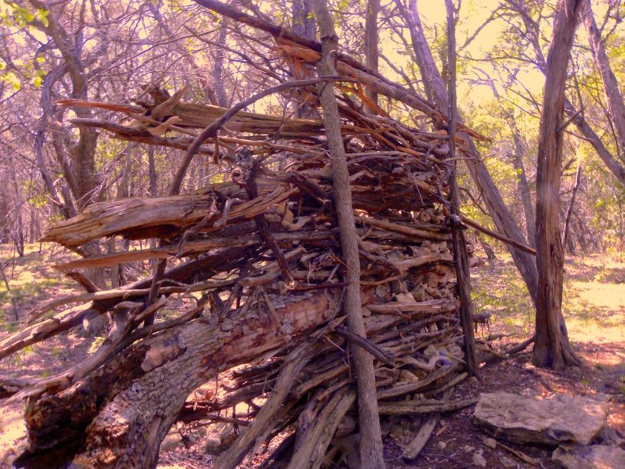 Cedar wall
