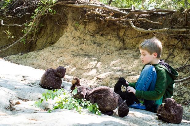 beavers-of-slaughter-creek-2
