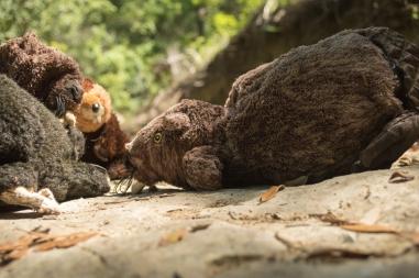 beavers-of-slaughter-creek-4