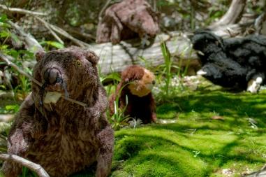 beavers-of-slaughter-creek-5