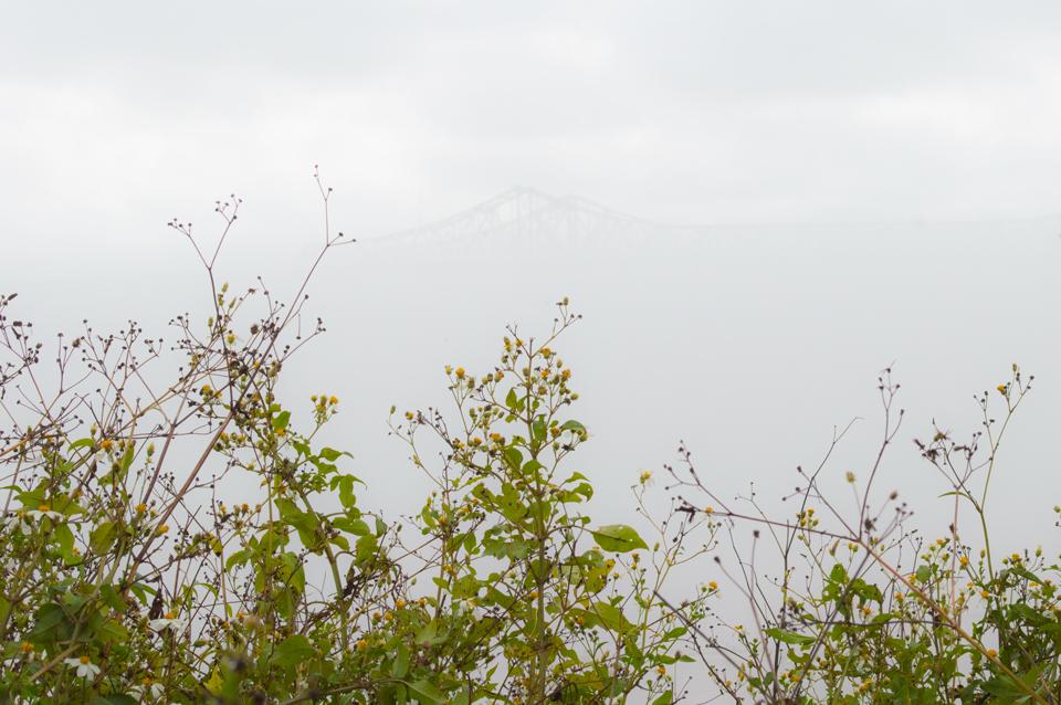 ih10-bridge-new-orleans-fog-web